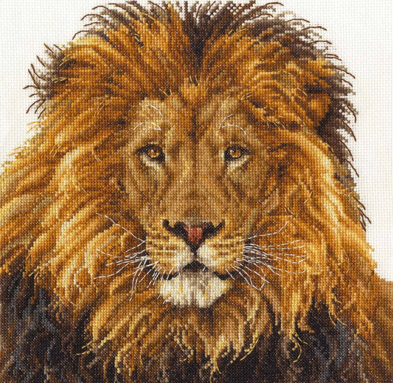 bk1668-lions-pride-preview.jpeg